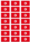 Tunisia Flag Stickers - 21 per sheet